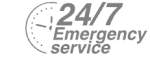 24/7 Emergency Service Pest Control in Redbridge, IG4. Call Now! 020 8166 9746